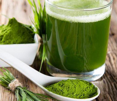 alga per dimagrire